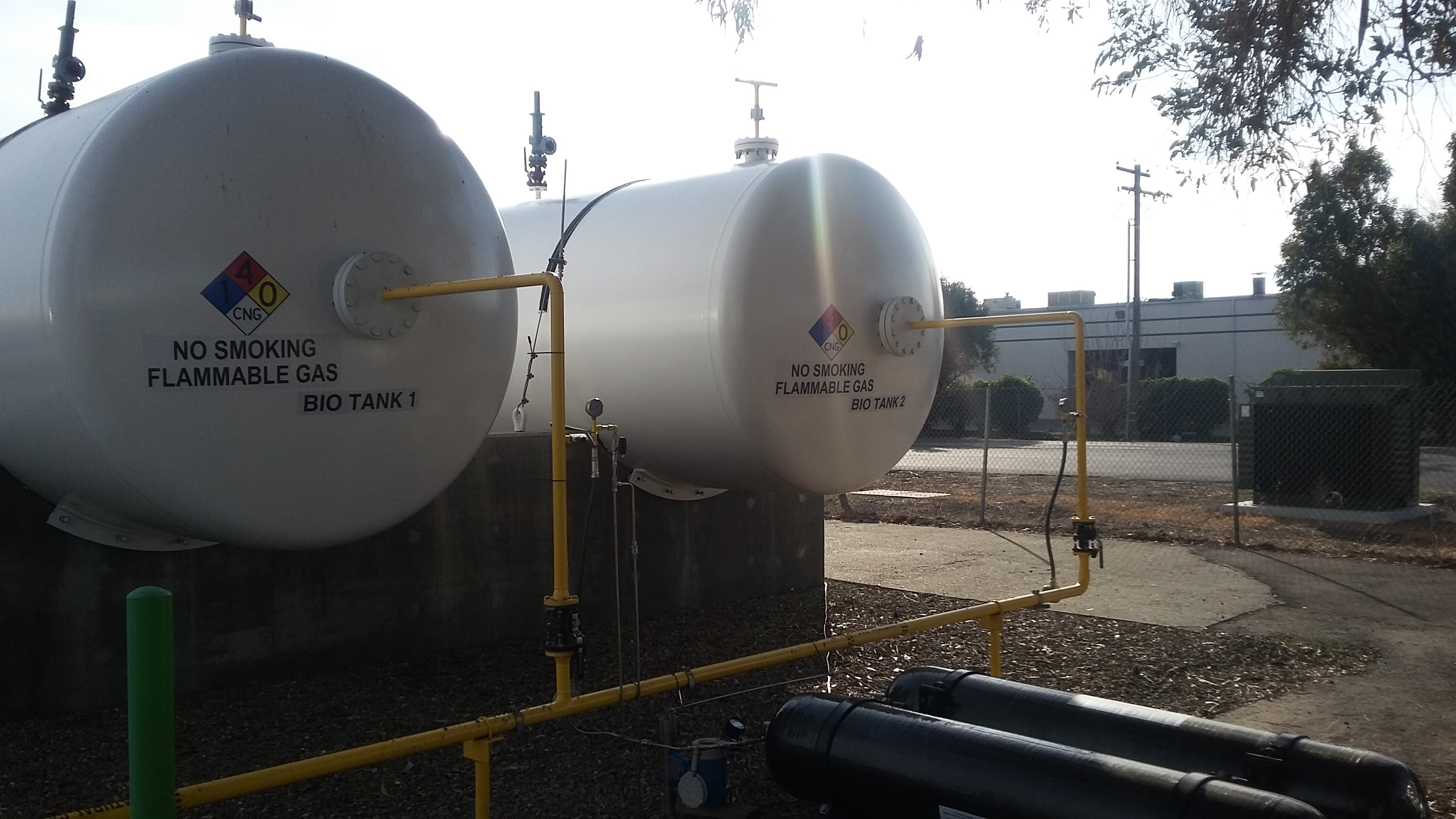 Biogas storage tanks